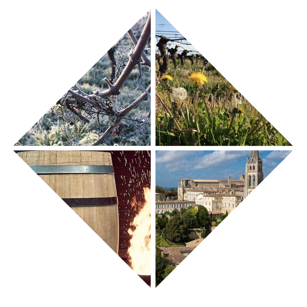 Cadre de photos domaine Fleur Penin